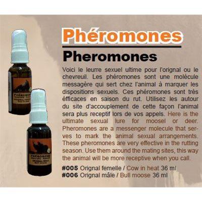 BULL MOOSE PHEROMONE 36 ML