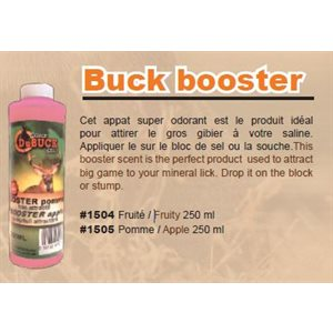 BOOSTER APPLE 250 ML SPRAY