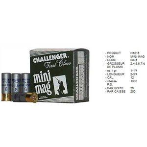 12 GA Mini Mag#6