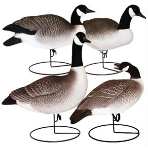 Field-Series FB Canada Goose Sentry 4 Pack